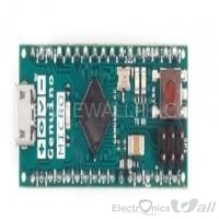 ATmega32U4 Genuino Micro Development Board (Original Made In Italy )